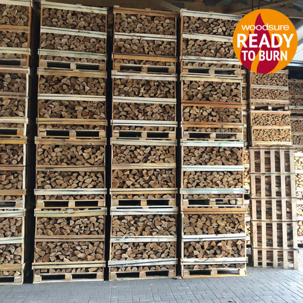 Kiln Dried Logs Hard Wood 1.2m³ in Kent Birchington, Thanet.
